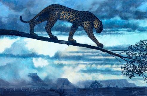 jaguar; Venezuela